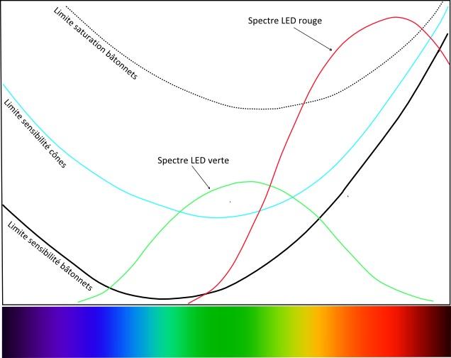 pourquoi la rhodopsine est rouge